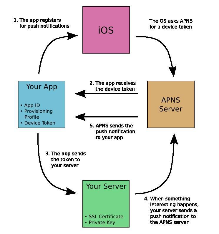 iOS Push Notification Path