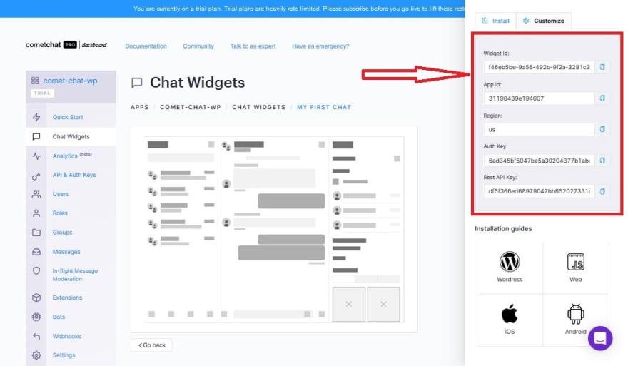 chat widget installation and customization page