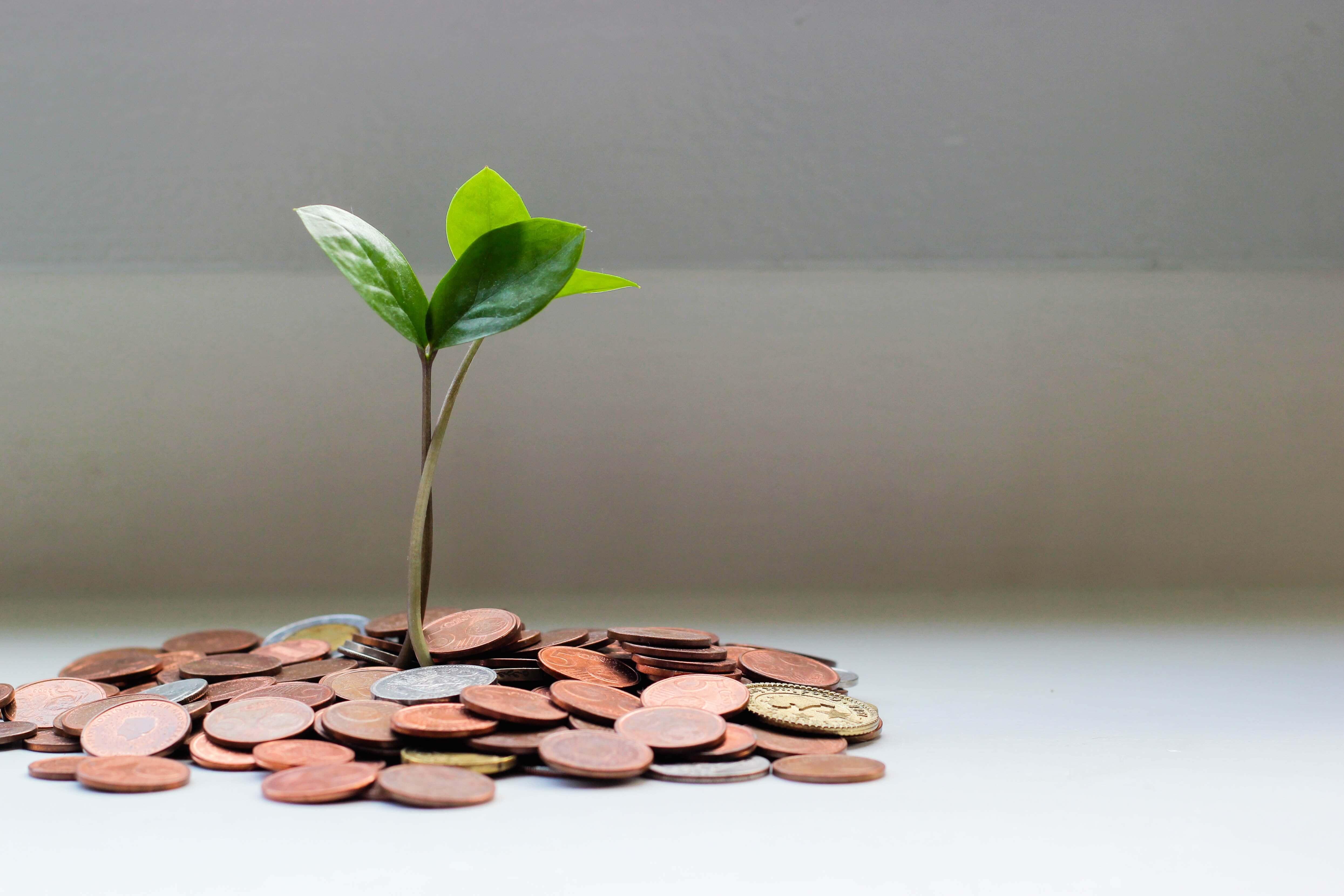 10 vinkkiä yrityksen maksuvalmiuden parantamiseen