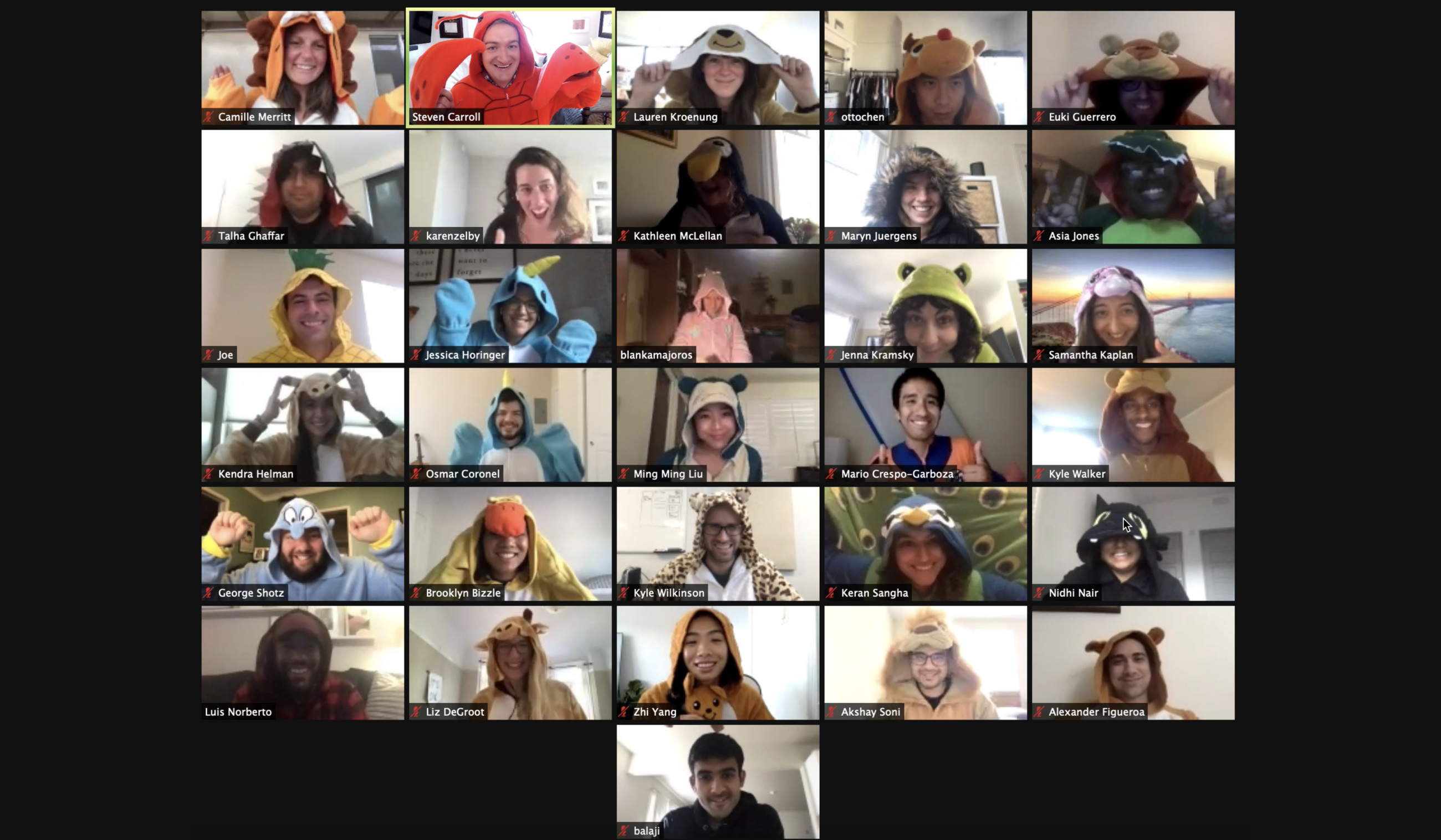 A screenshot of 31 Zoom participants in onesies