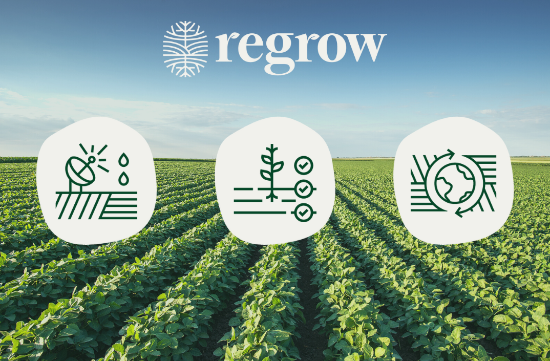 Investment Notes: Regrow