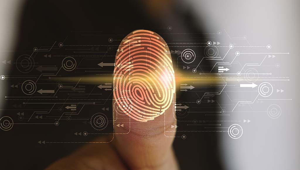 ¿Qué es la identidad digital? Así puedes protegerte | Vivus.es