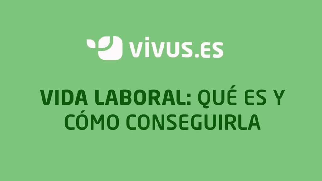 Vida laboral: qué es y cómo conseguirla | Vivus.es