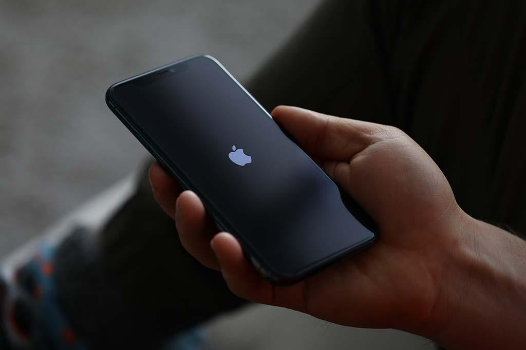 Guía para comprar un iPhone en 2020: toma nota | Vivus.es