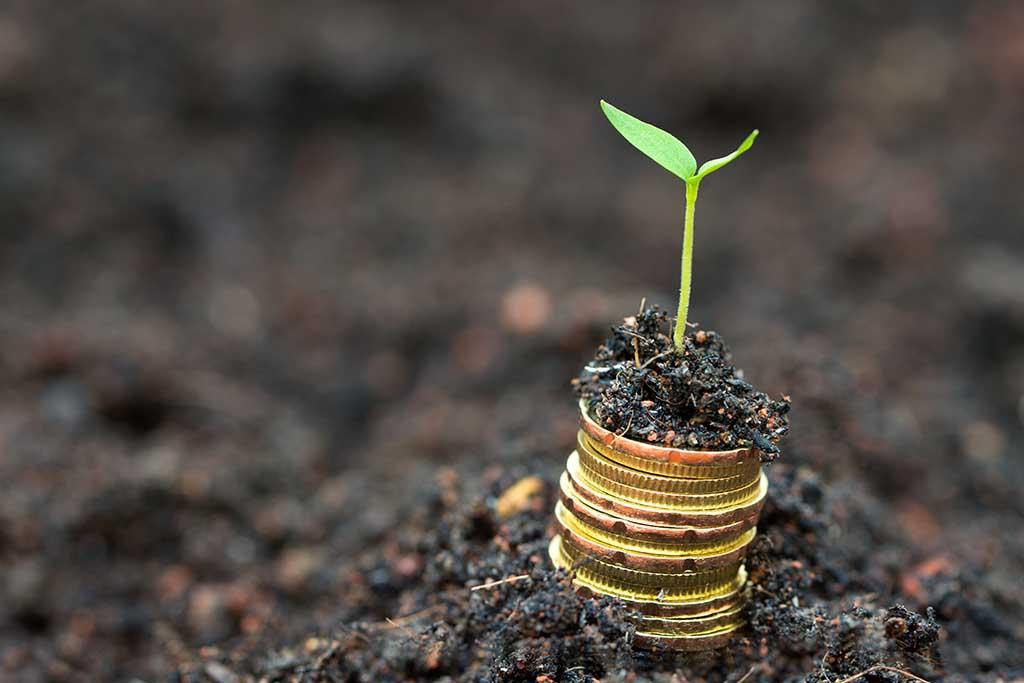 Cómo y dónde invertir 10.000 euros en 2020 | Vivus.es