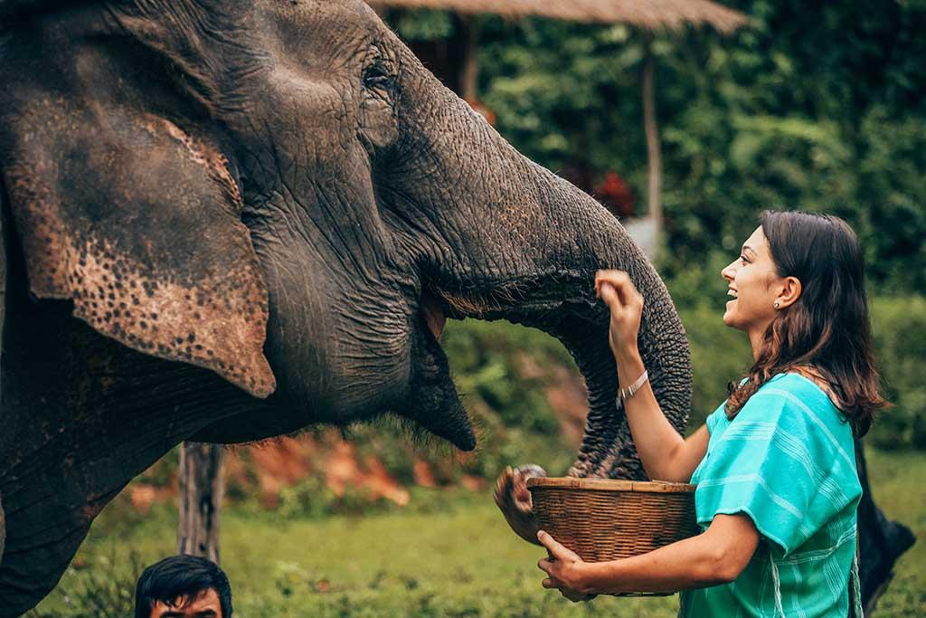 15 consejos imprescindibles si vas a viajar a Tailandia | Vivus.es