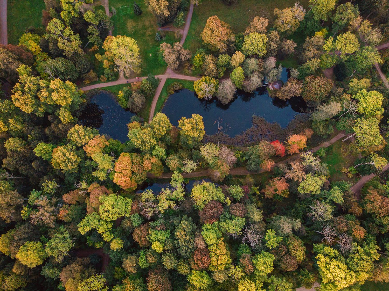 Cómo ahorrar mientras cuidas el planeta: 5 claves para conseguirlo