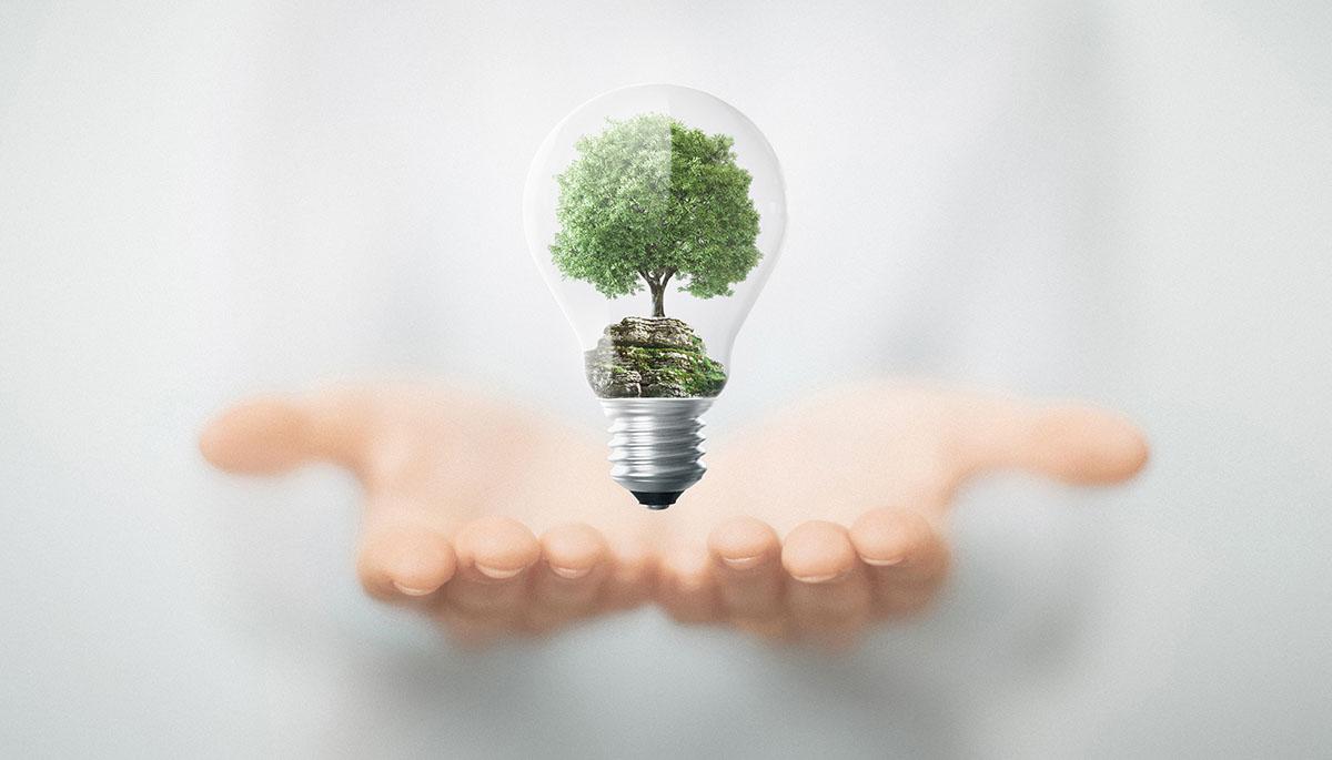 10 cosas que puedes hacer hoy mismo para empezar a reciclar | Vivus.es