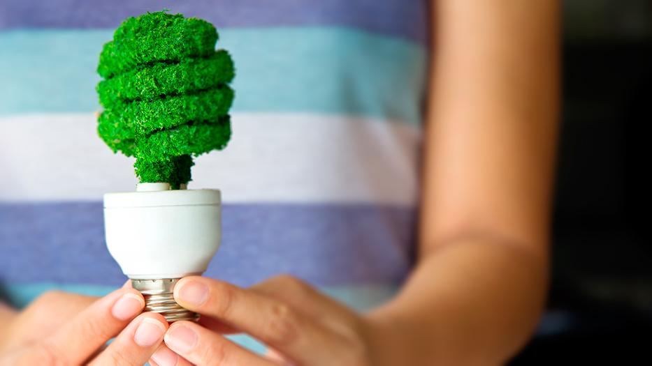 ¿Cuáles son los beneficios de las bombillas de bajo consumo?