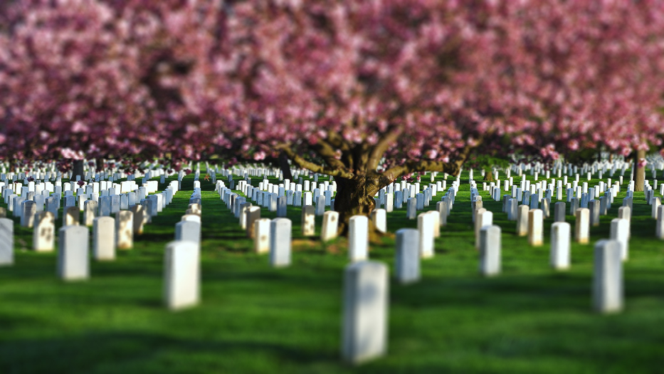 Análisis sobre los gastos de un entierro
