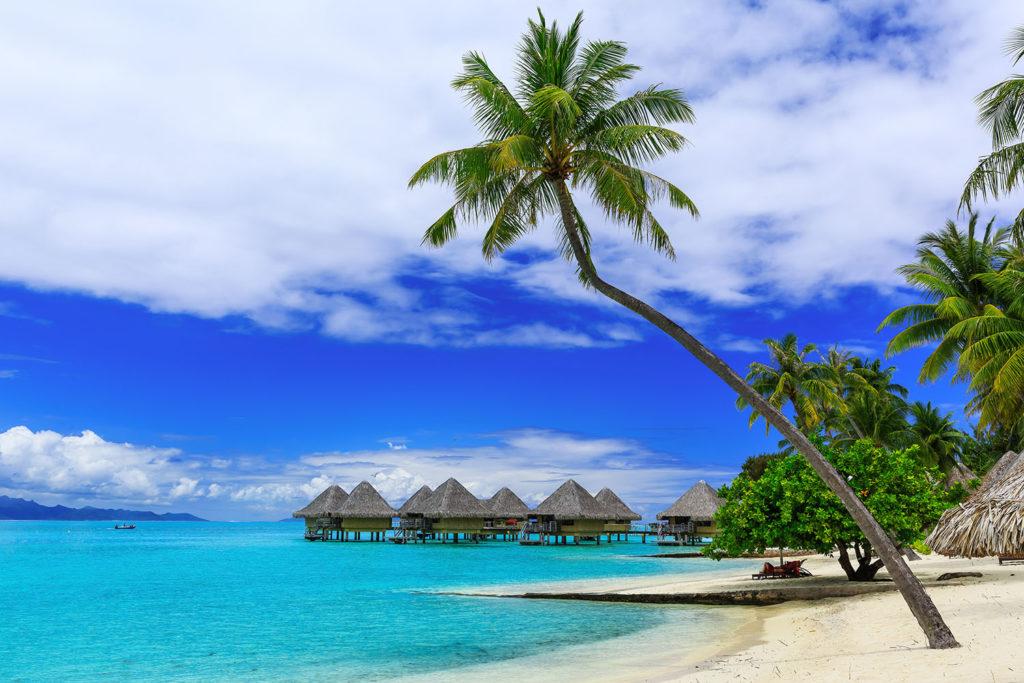 ¿Qué es la 'Q' de calidad turística y para qué sirve? | Vivus.es