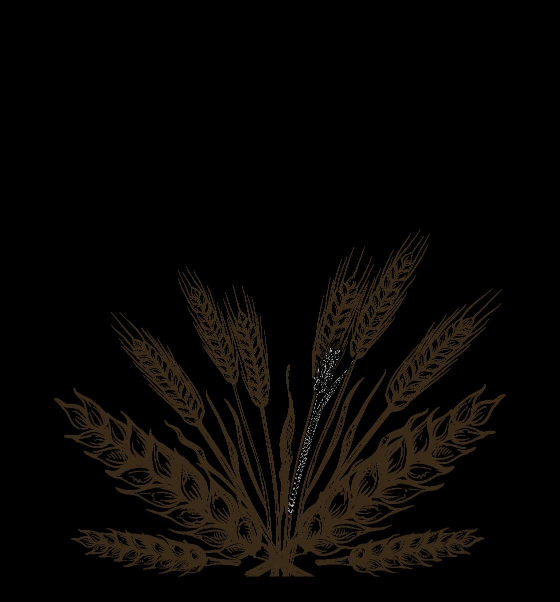 Grainshaker Wheat Vodka