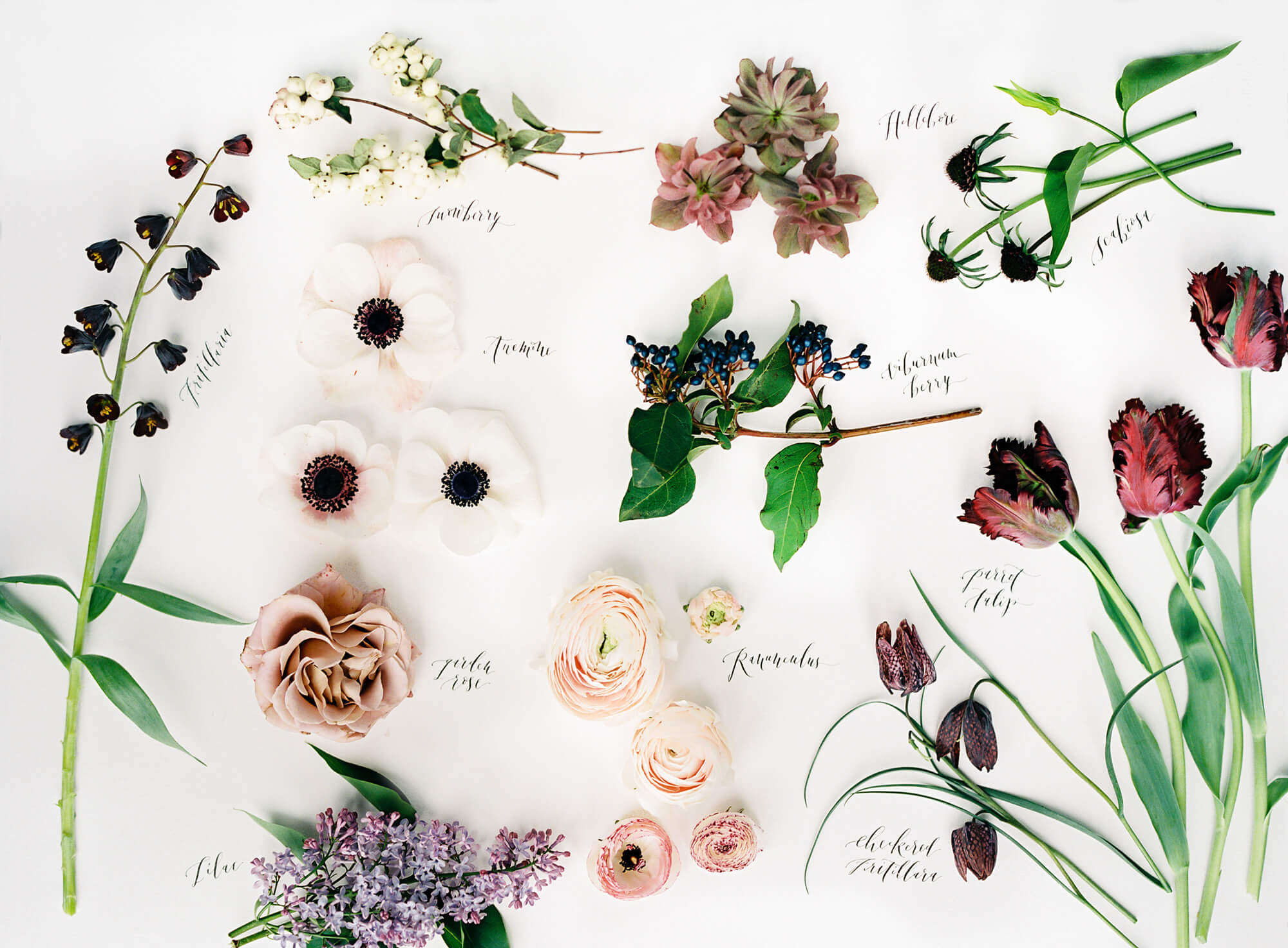types of flowers for a wedding