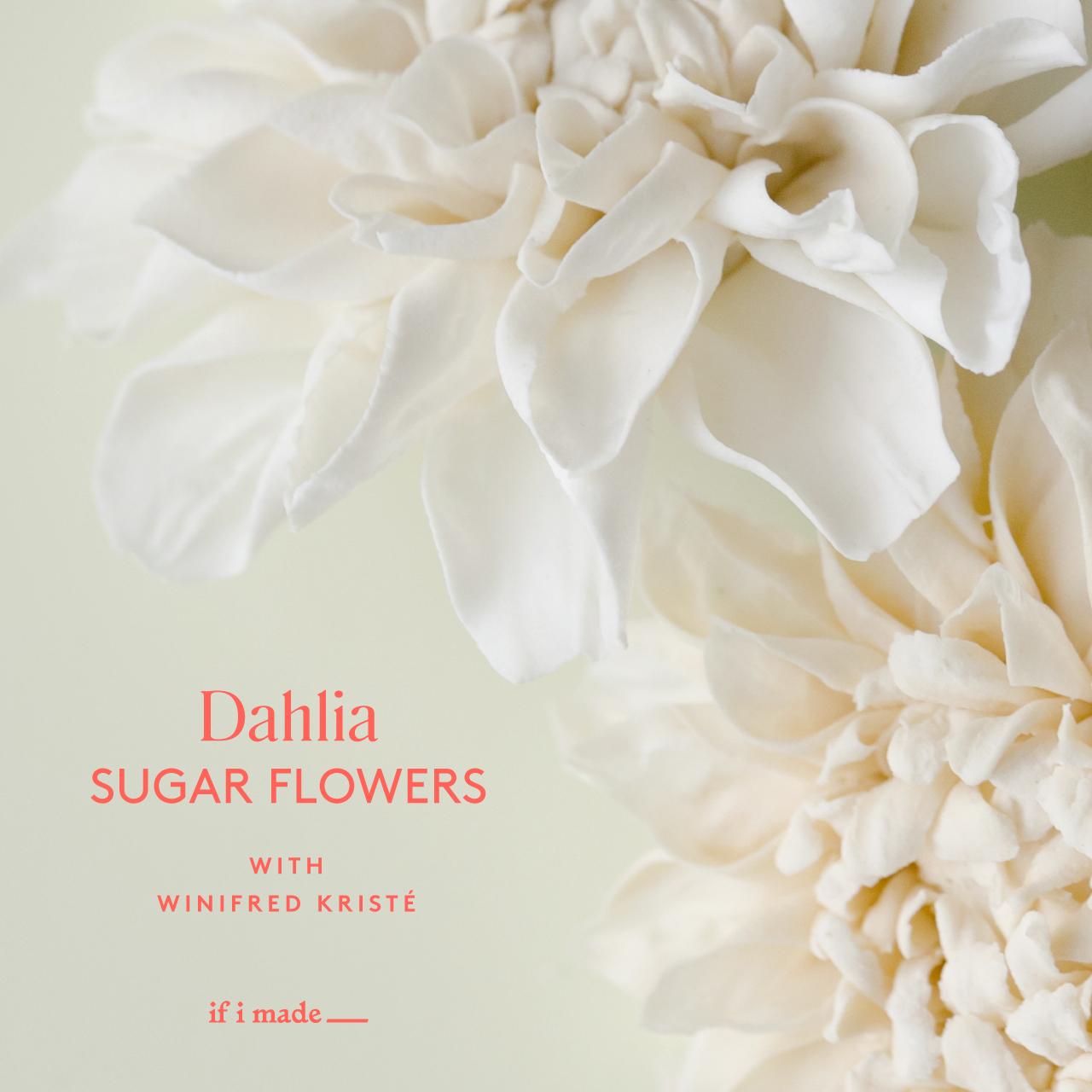 Dahlia Sugar Flowers with Winifred Kriste