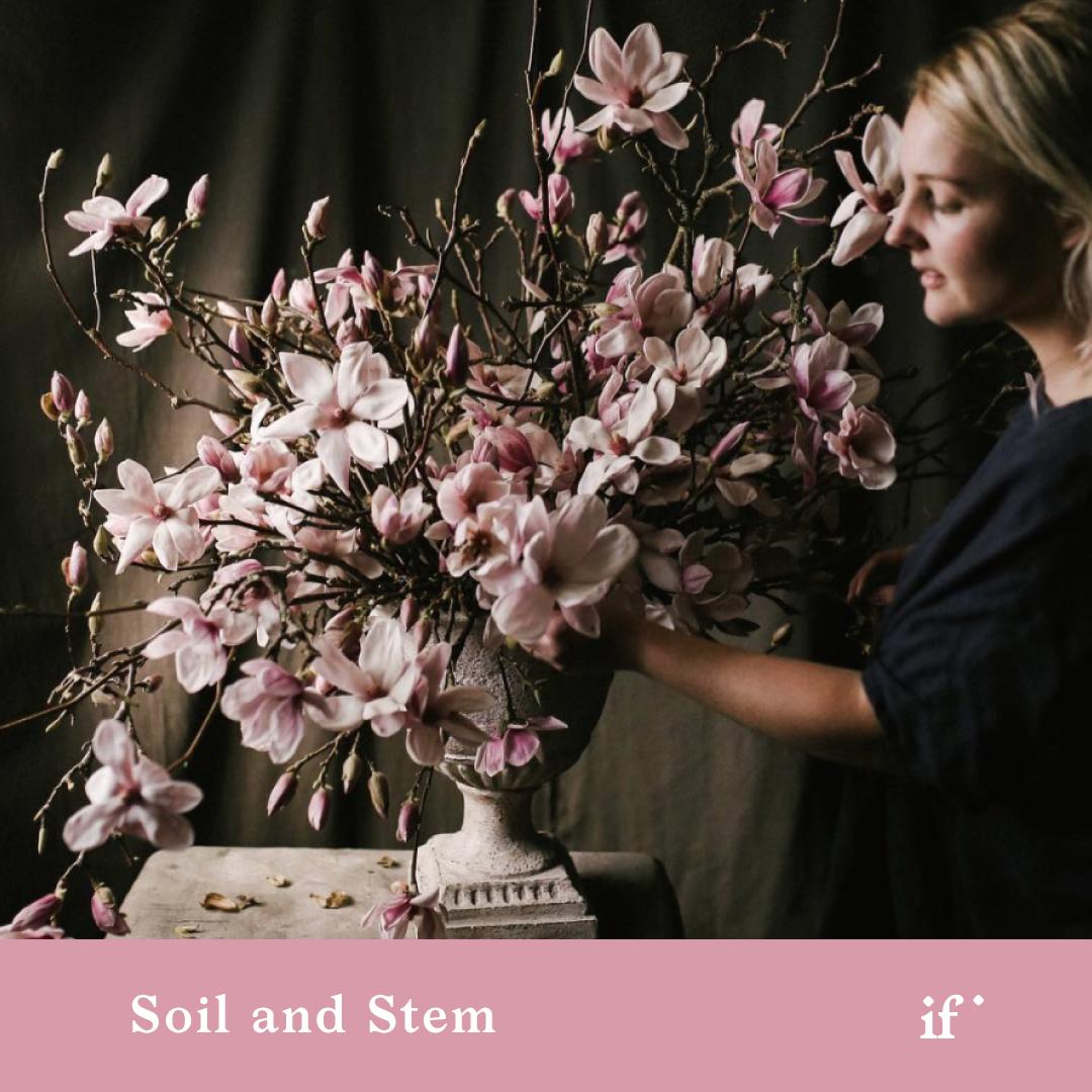 Soil & Stem