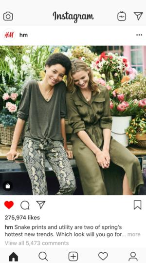 Instagram Post - In App.png