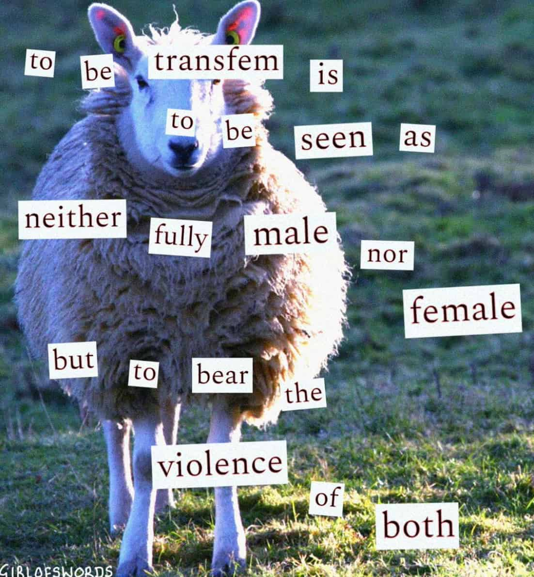 Eden Girl of Swords trans rights text multi media visual artist collages irony