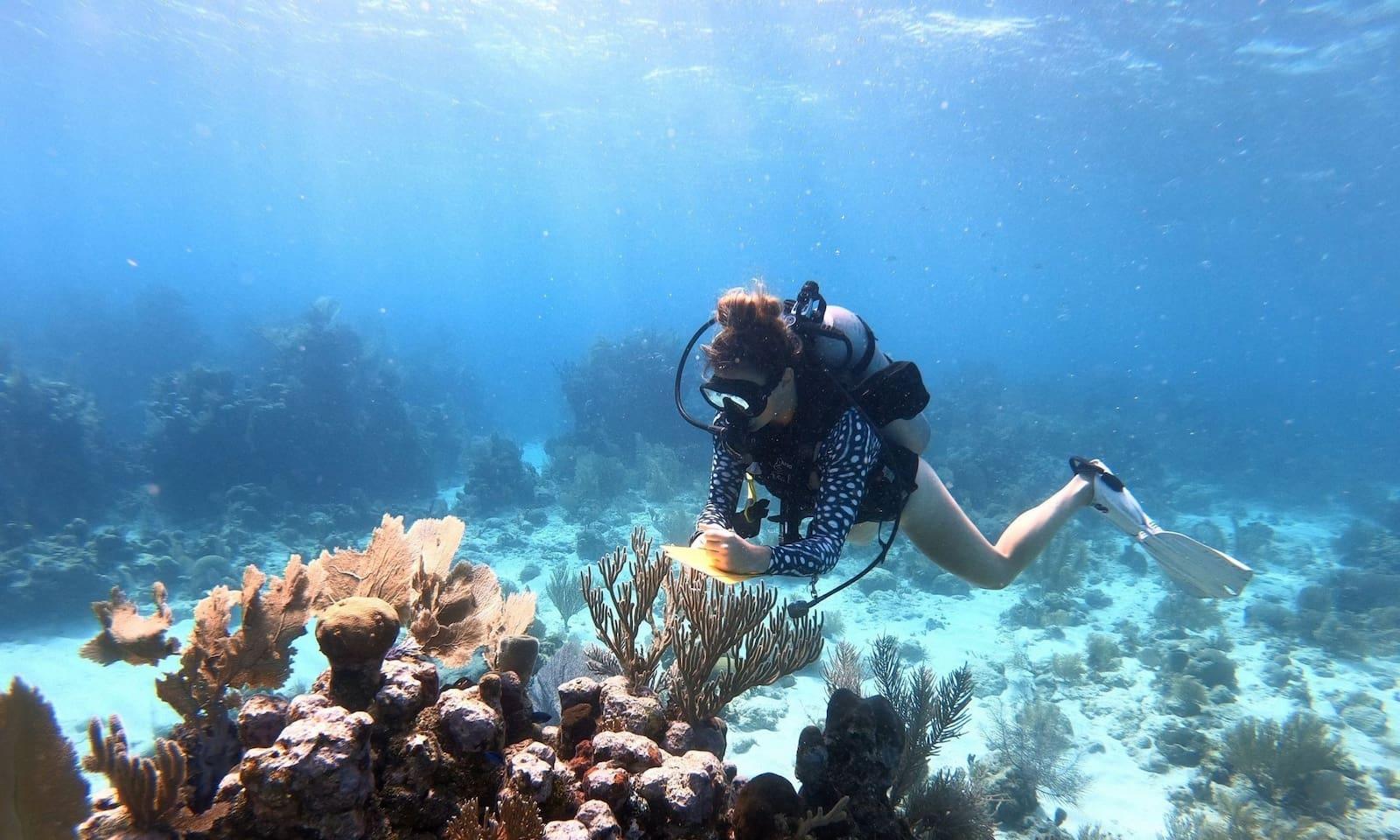 'Women in Ocean Science' Strives To Draw More Women In Scientific Careers