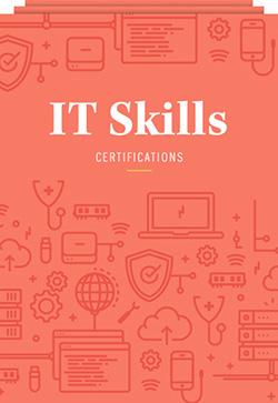 Icon - IT Skills