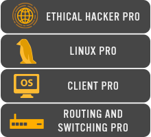 Icon - TestOut Cybersecurity Path Courses - Ethical Hacker Pro, Linux Pro, Client Pro, and Routing and Switching Pro