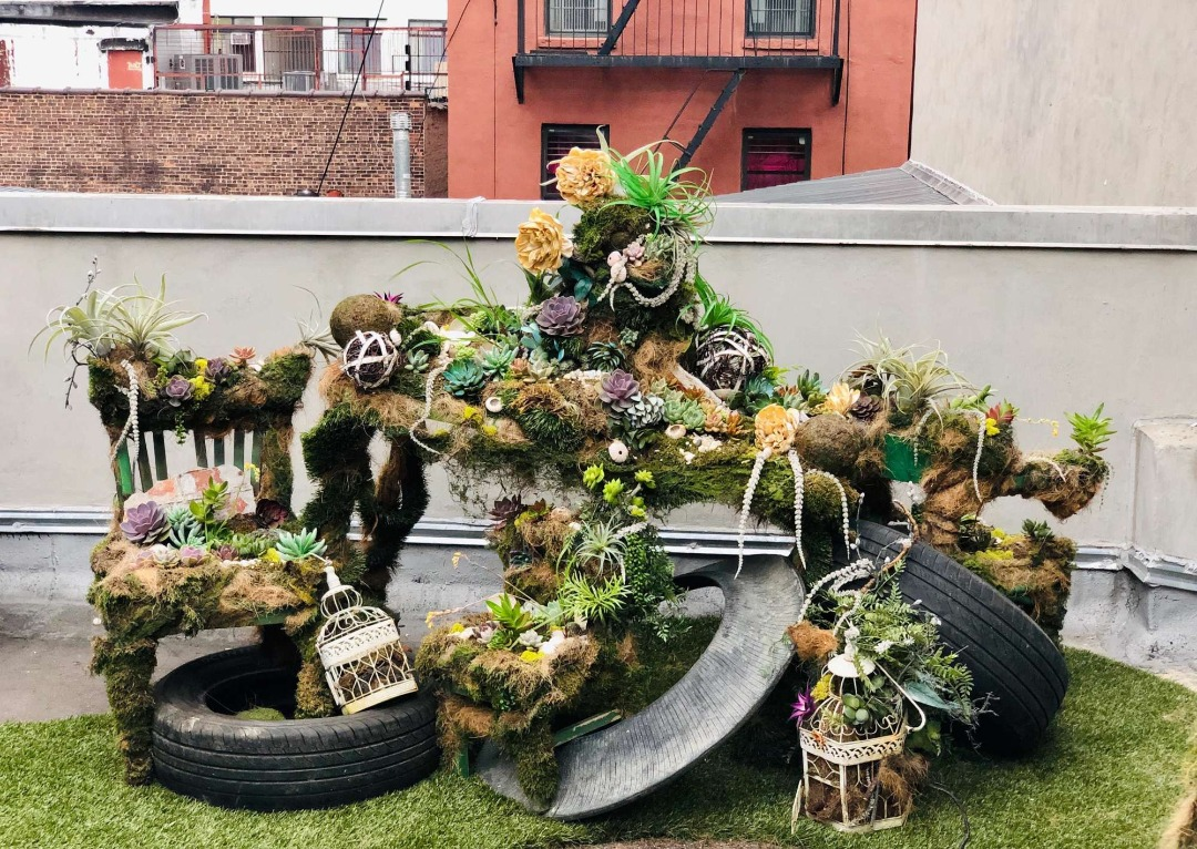 Found objects and flora sculpture on the roof of a New York City apartment building.