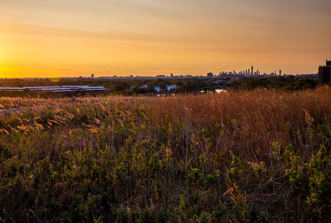 Sunset view across the fields in Shirley Chisholm State Park