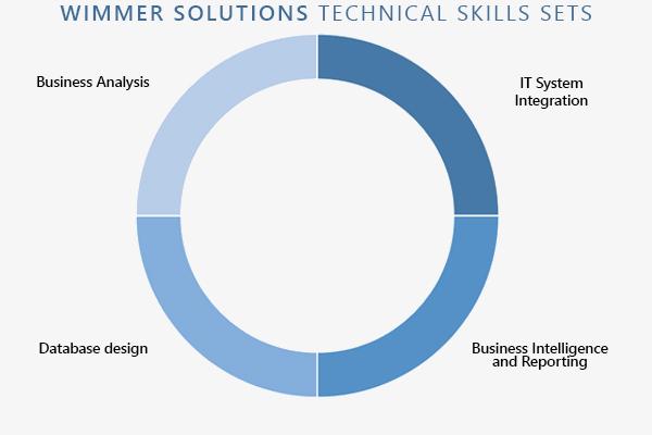 Business Intelligence Inforgraphic