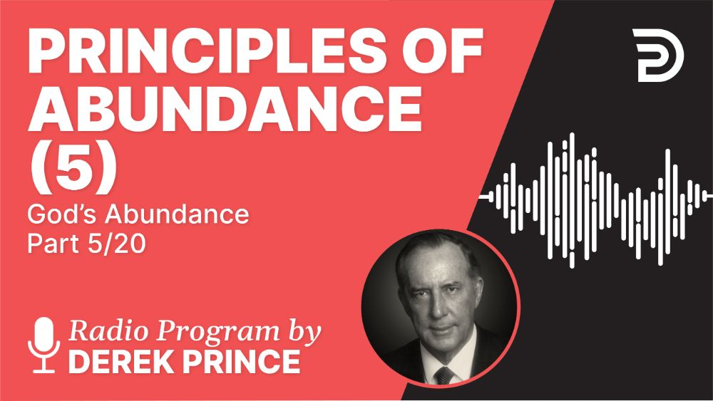 Principles of Abundance (5)