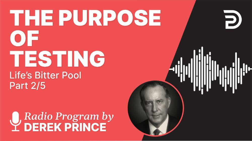 The Purpose of Testing