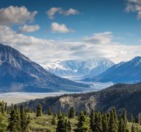 Image d'un paysage de nature