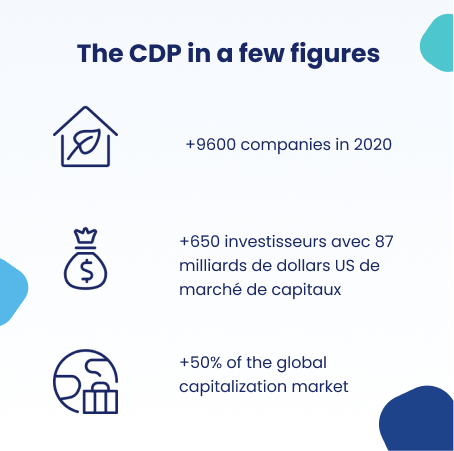 CDP in few numbers