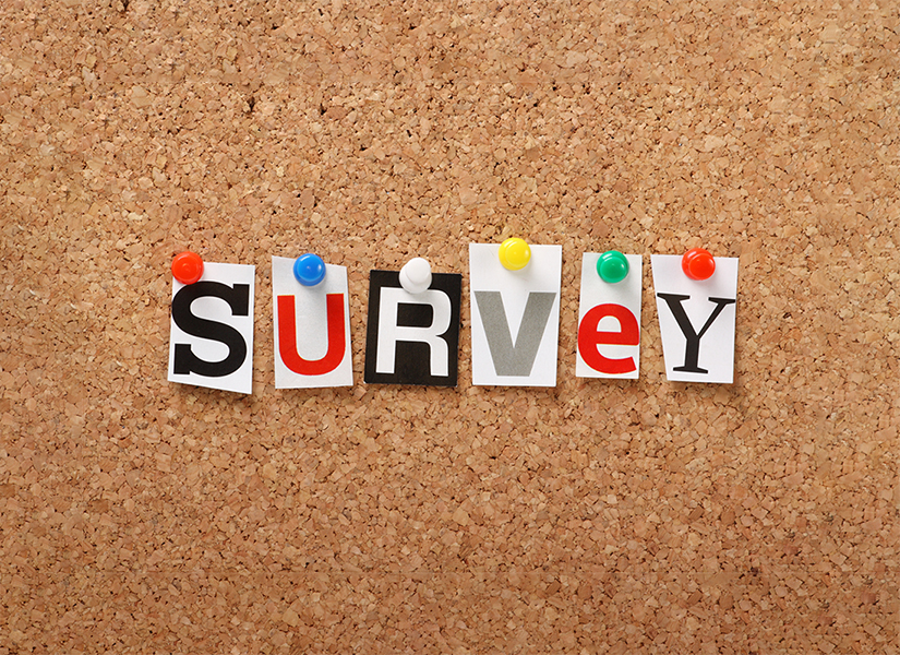 "bulletin board with letters spelling out ""survey"""