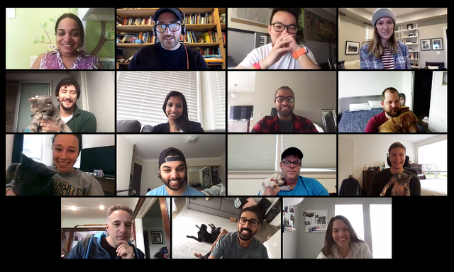 A photo of Amino employees on a Zoom call with their pets