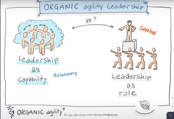 What is agile leadership?