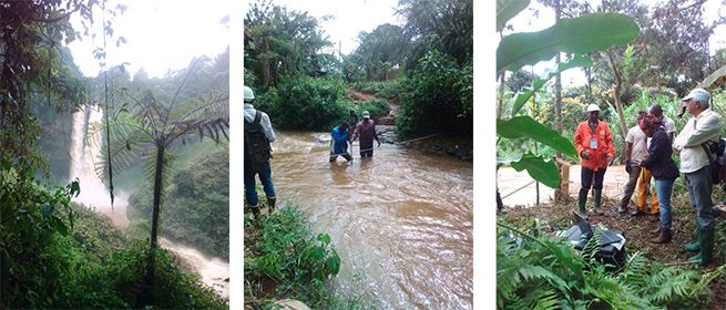 Field Work at Bafang and Manjo. West region of Cameroon