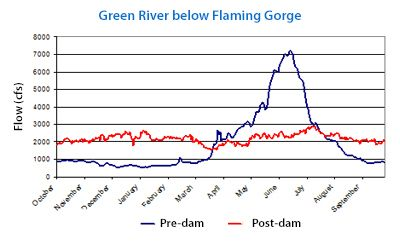 Hydrograph showing downstram flows of the Green River below the Flaming Gorge dam site