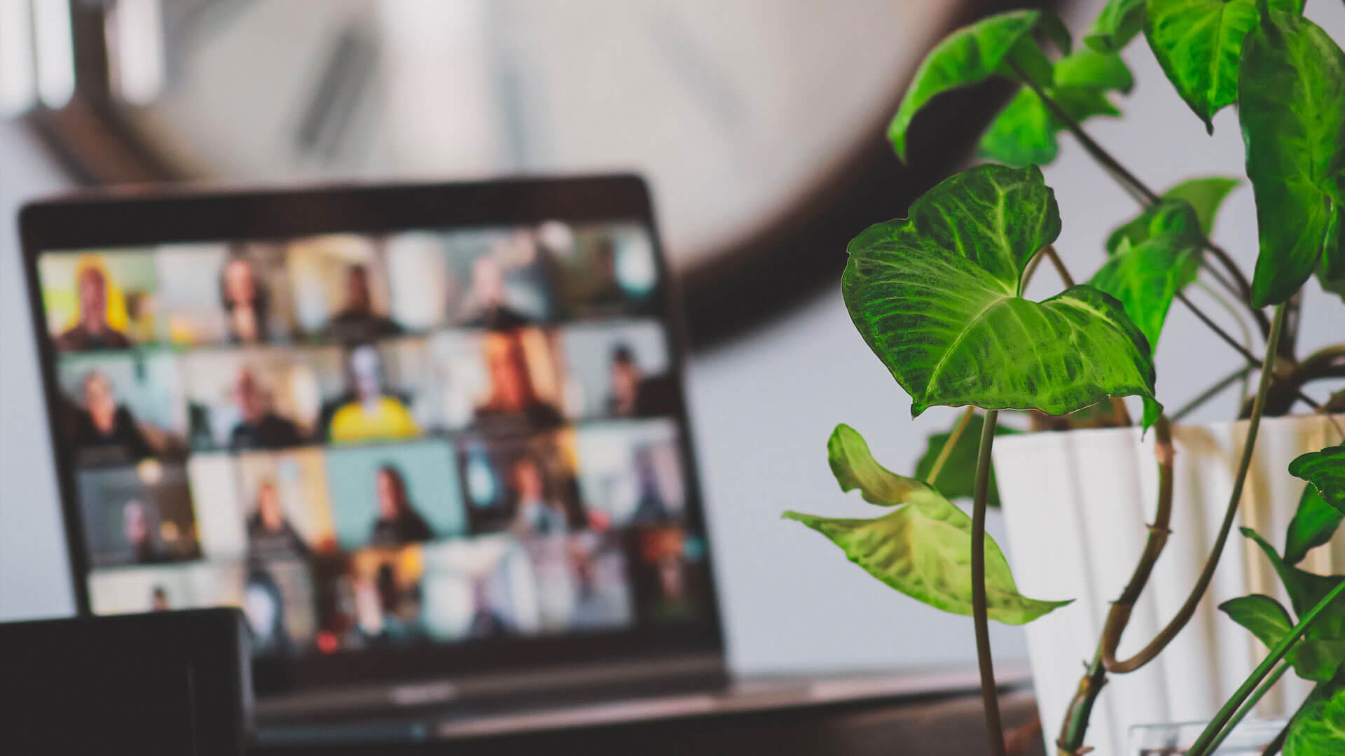 A open laptop in a virtual group chat, placed next to a house plant.