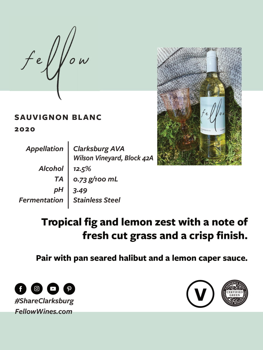 Fellow Wines Sauvignon Blanc Tech Sheet