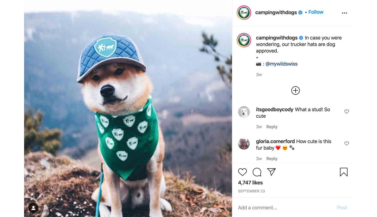 Camping With Dogs, an outdoors-focused retailer, gets followers to add the #campingwithdogs hashtag alongside the pictures of their beloved canines.