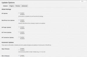 automatically-update-wordpress-core-plugins-theme-plugin