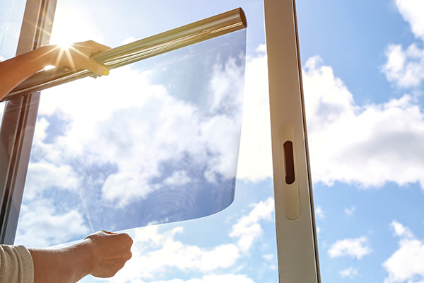 Person holding solar film
