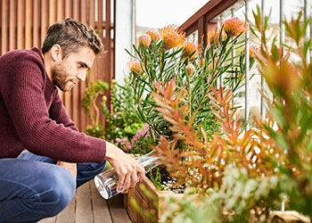 Man watering plant pots on a balcony