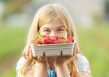 young girl with hand picked strawberries