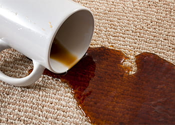 Carpet stained with coffee from spilt coffee mug