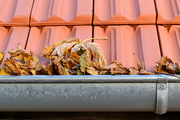 4 reasons why cleaning your gutters should be top of your 'to-do' list
