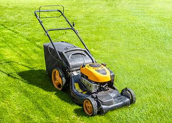 lawnmower on a lawn