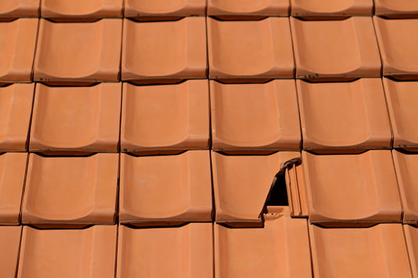 Have you looked at your tiled roof lately?