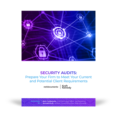 Graphic of the pdf Security Audits with locks on the cover that are connected to each other.