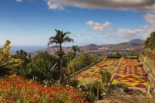 Madeira Botanical Gardens
