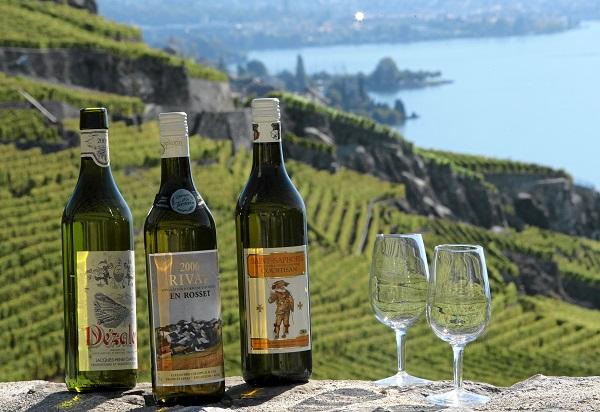 Geneva Wine